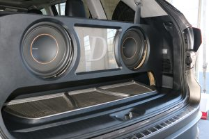 Pioneer Sound Build Off Audio Source subwoofer